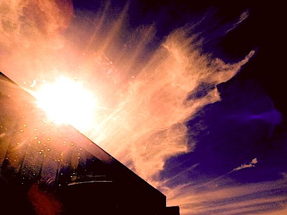 bozo's sky