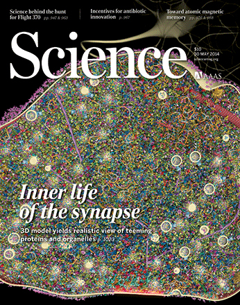cover science synapse
