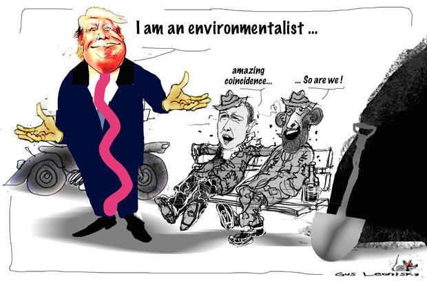 the environ-mentalist