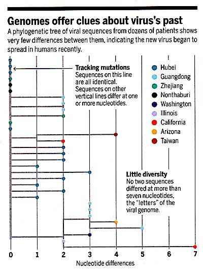 chart virus