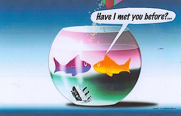 socialising in a fish bowl