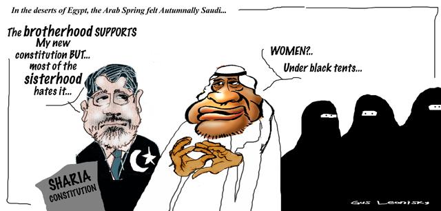 morsi's constitution