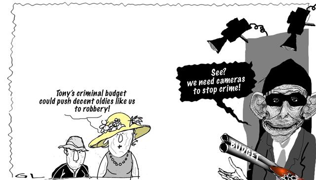 criminal budget