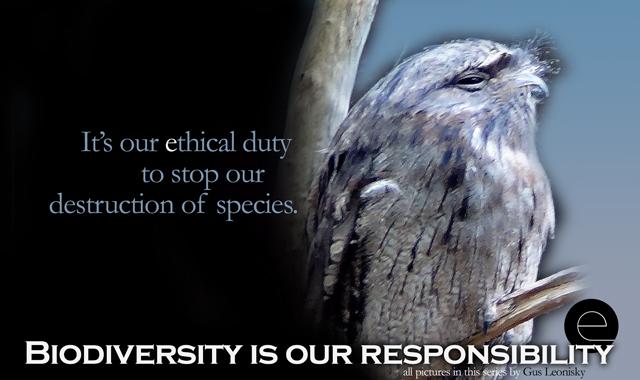 ethical duty9